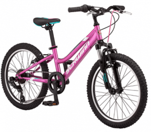 Schwinn Greater Timber Bike, 7 Speed