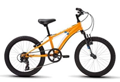 Diamondback mountain bike Cobra Youth